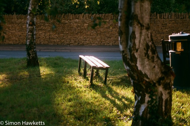 Pentax SFXn sample pictures - Bench in Sunlight