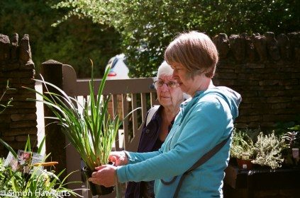 Two people looking at potted plants