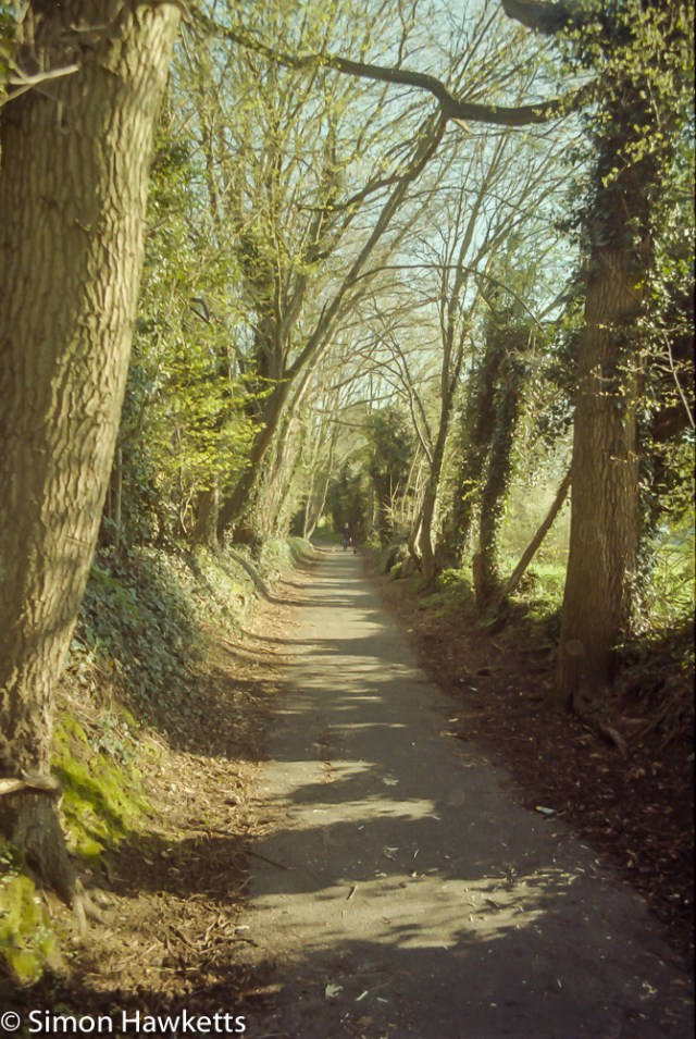 Pentax Z-20 sample pictures - another Stevenage cycle path