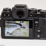 Fuji X-T1 mirrorless camera rear view showing picture display