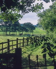 Precisa ct-100 colour  slide film pictures - A view in Lincolnshire