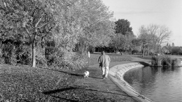 Weltaflex TLR camera sample pictures - man walking his dog