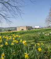 Chatsworth House in Derbyshire 1
