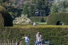 Chatsworth house pictures - Emma in the maze