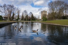Sony Nex 6 sample pictures - Stevenage Town centre park