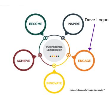 Purposeful Leadership Model- Dave Logan Engage
