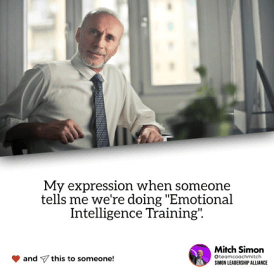 EQi-2.0 Emotional Intelligence Assessment Training for your next team building workshop, conference or event with the Simon Leadership Alliance.  -San Diego, CA -La Jolla, CA -Del Mar, CA  -Solana Beach, CA -Carlsbad, CA Featuring Forbes Coach and top executive training company for five consecutive years by the San Diego Business Journal Mitch Simon and the Simon Leadership Alliance