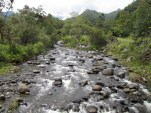 Lots Of Rivers In Colombia