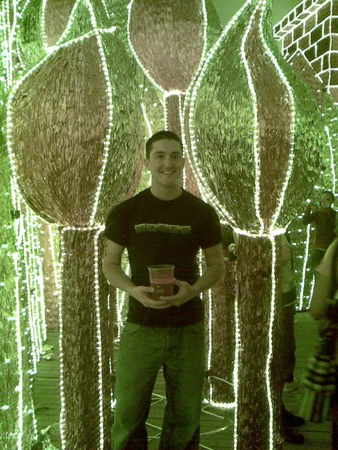 The Christmas lights in Colombia, 2010