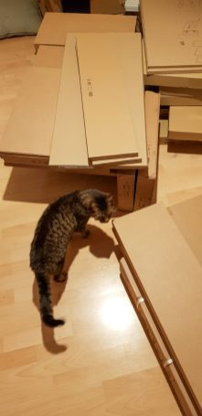 Flat-Pack kitchen inspected by Odin