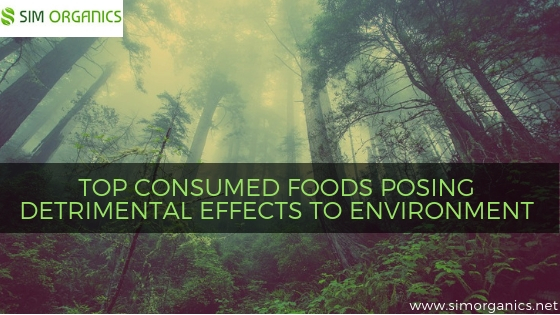TOP CONSUMED FOODS POSING DETRIMENTAL EFFECTS TO ENVIRONMENT