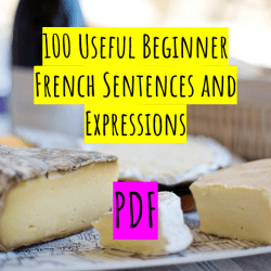 100 Useful Beginner French Sentences and Expressions PDF