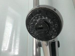 シャワーヘッド水垢