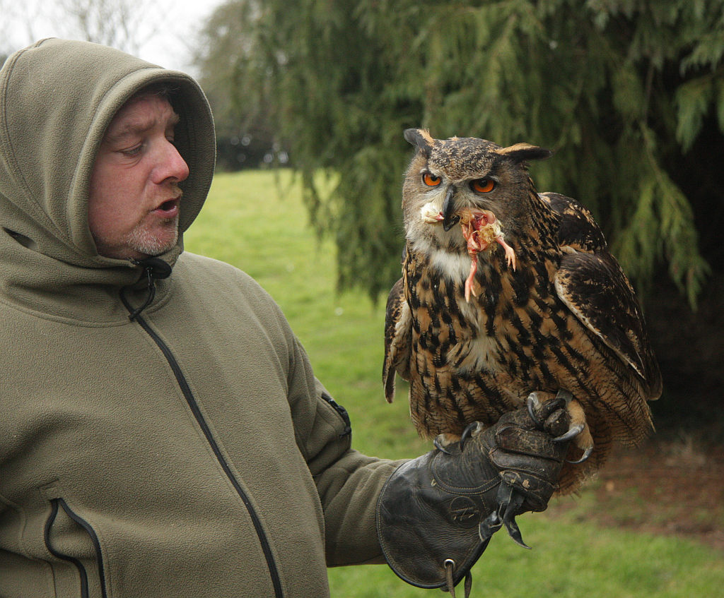 Steve the proprietor with Bonnie the owl
