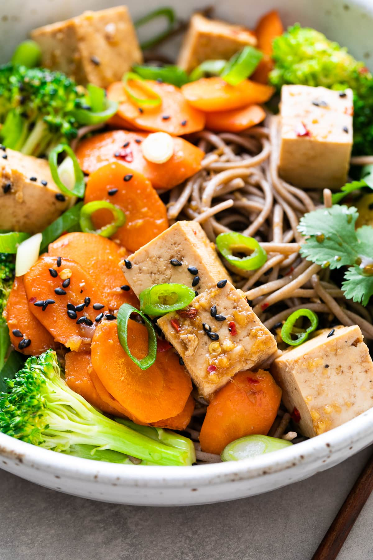 up close, side angle view of serving of sesame soba noodle salad with tofu on a bowl.