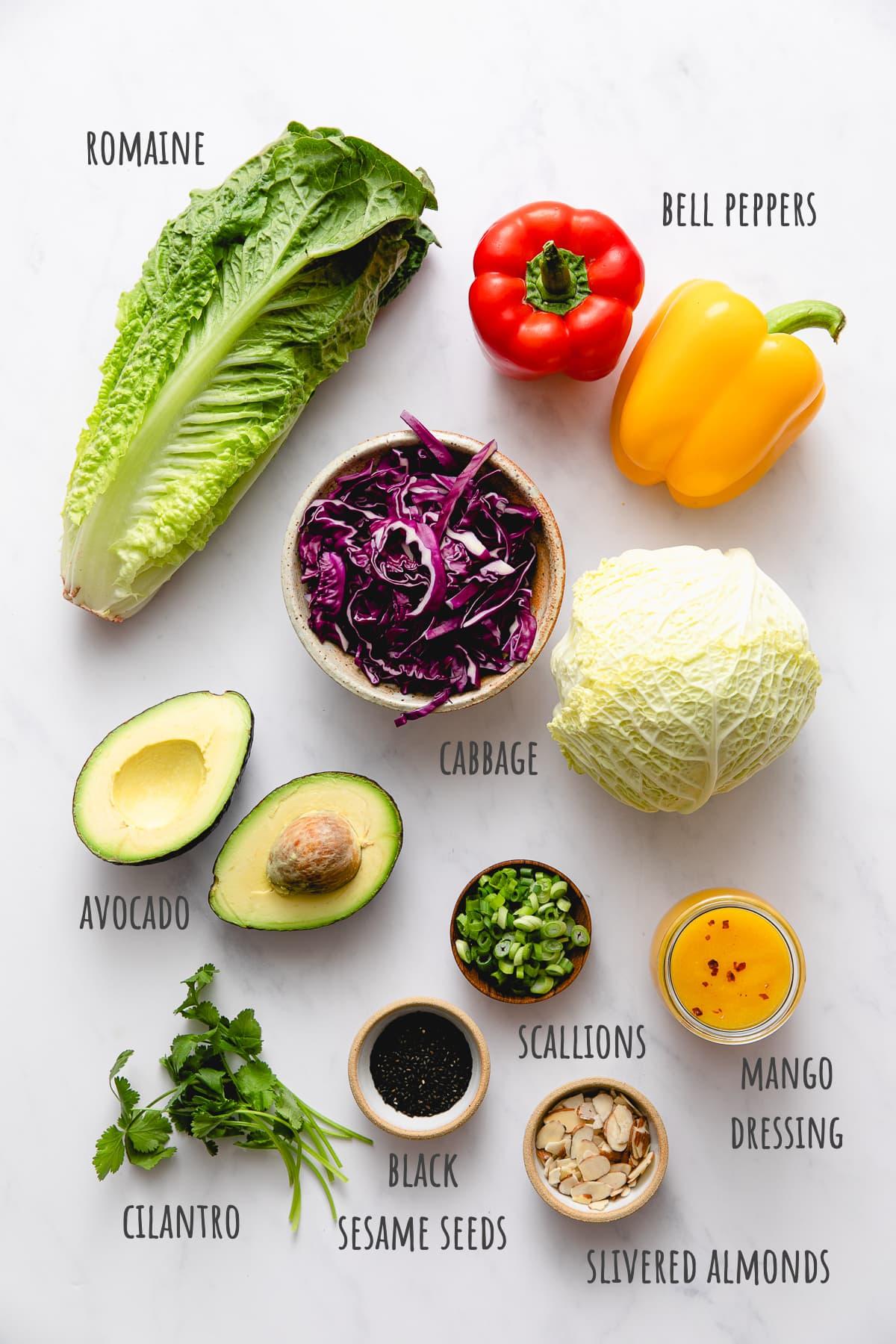 top view of ingredients used to make rainbow chop chop salad.