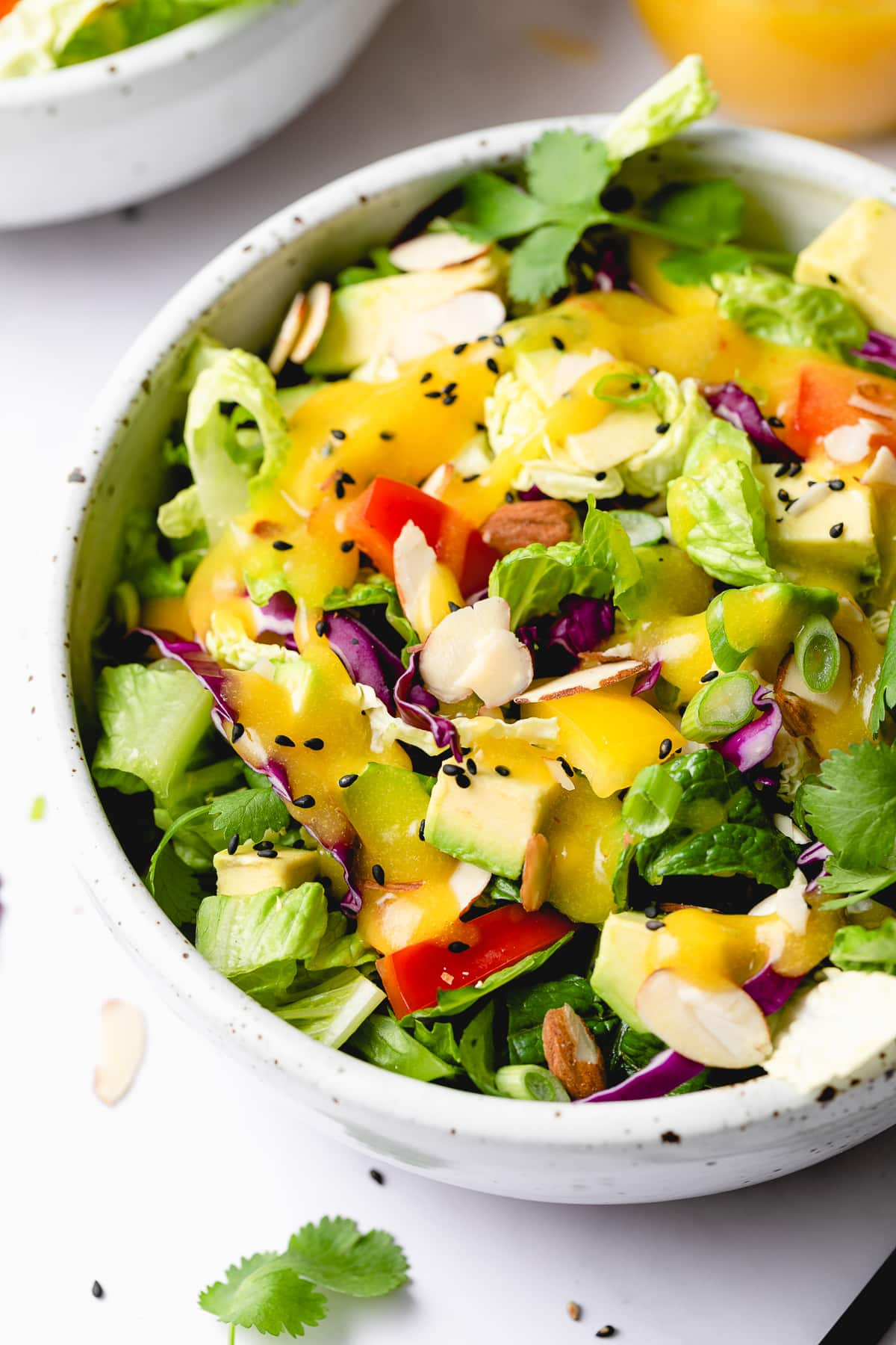 side angle view of rainbow chop chop salad in a bowl.