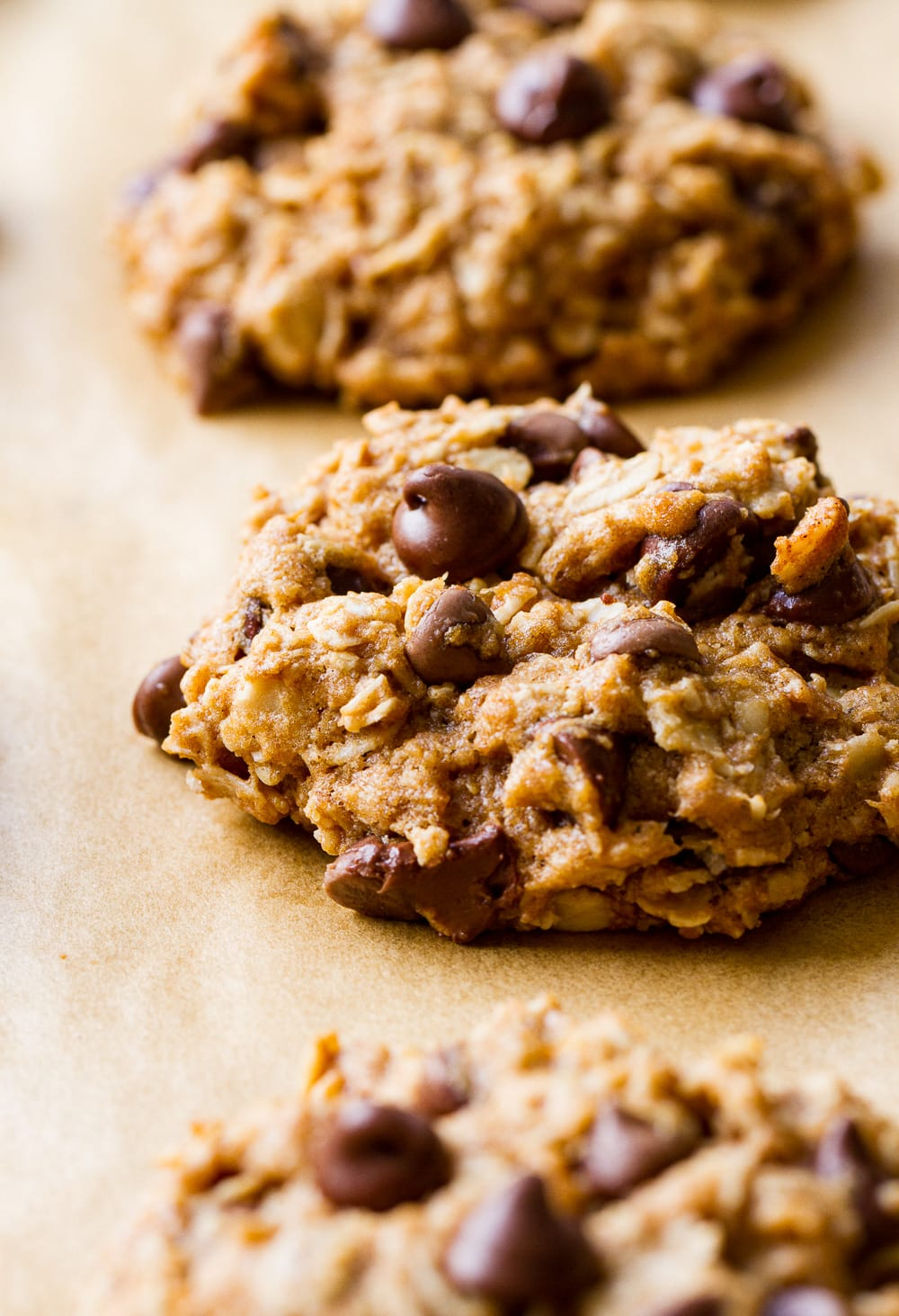side angle view of vegan oatmeal chocolate chip cookies just baked on a cookie sheet.