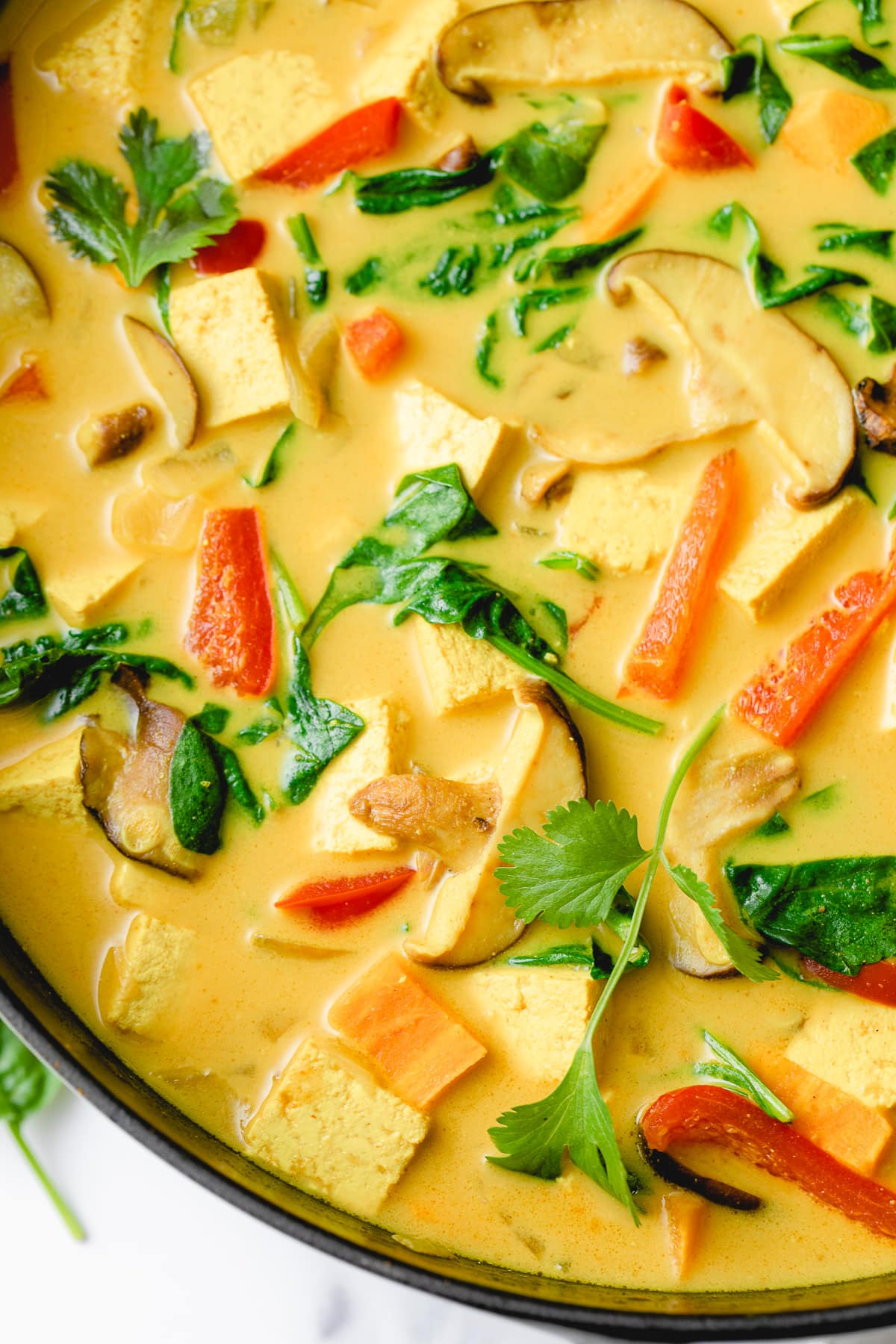 up close view of pot of fresh made vegan tofu curry.