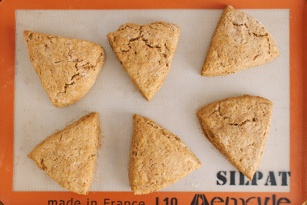 top down view of freshly baked vegan pumpkin scones fresh from the oven.