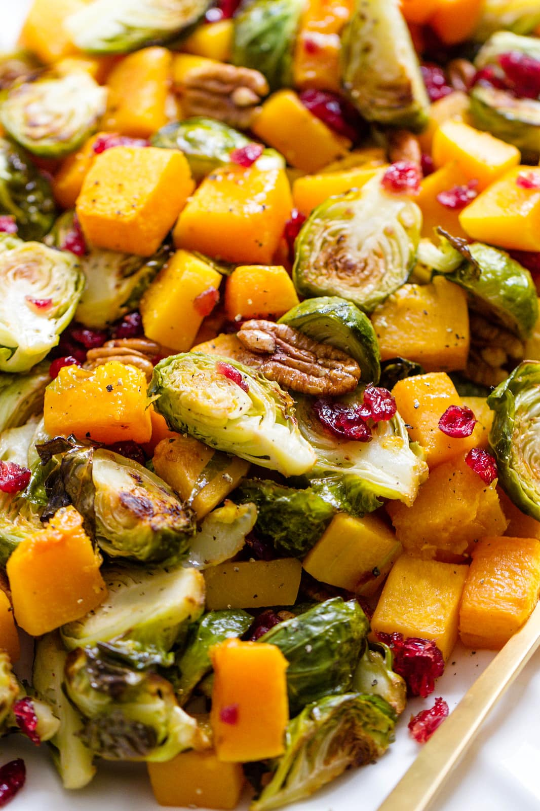 side angle view of roasted brussels sprout butternut squash with cranberries and pecans.