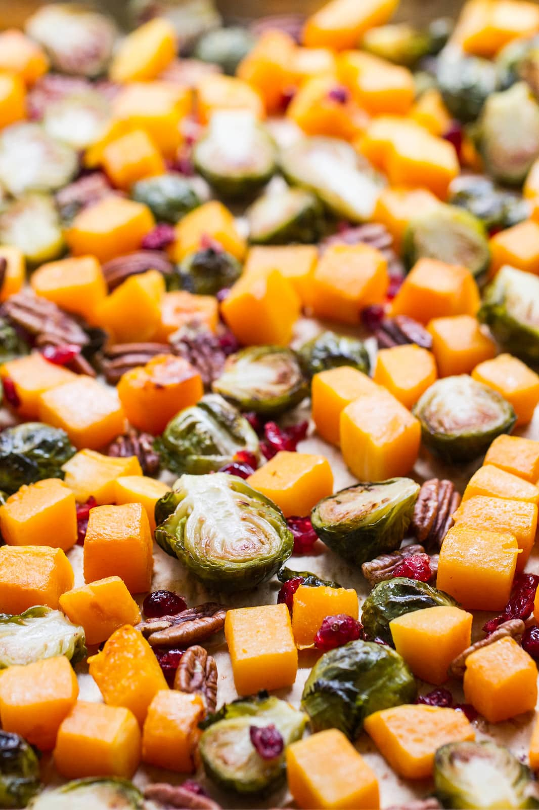 side angle view of freshly roasted roasted brussels sprout butternut squash pecans cranberries.