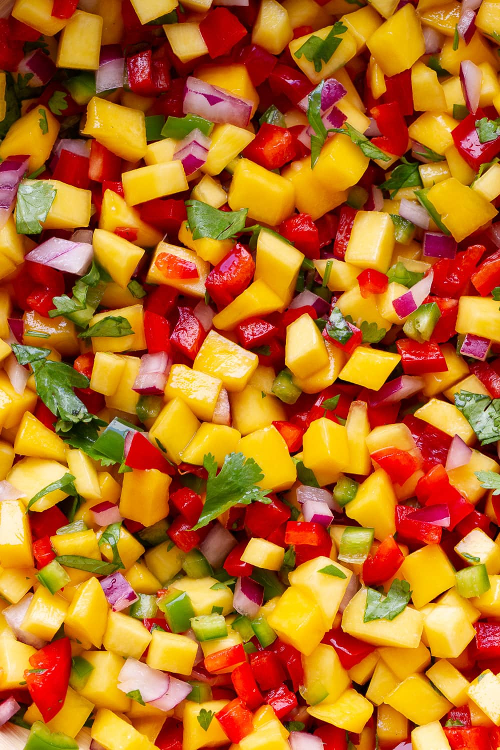 top down, up close view of healthy mango salsa.