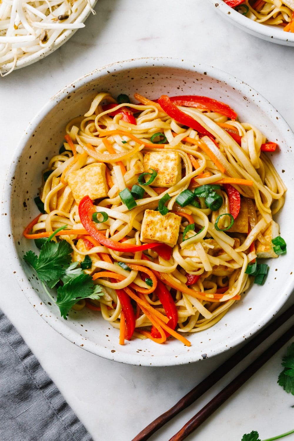vegetable lo mein with tofu in a bowl