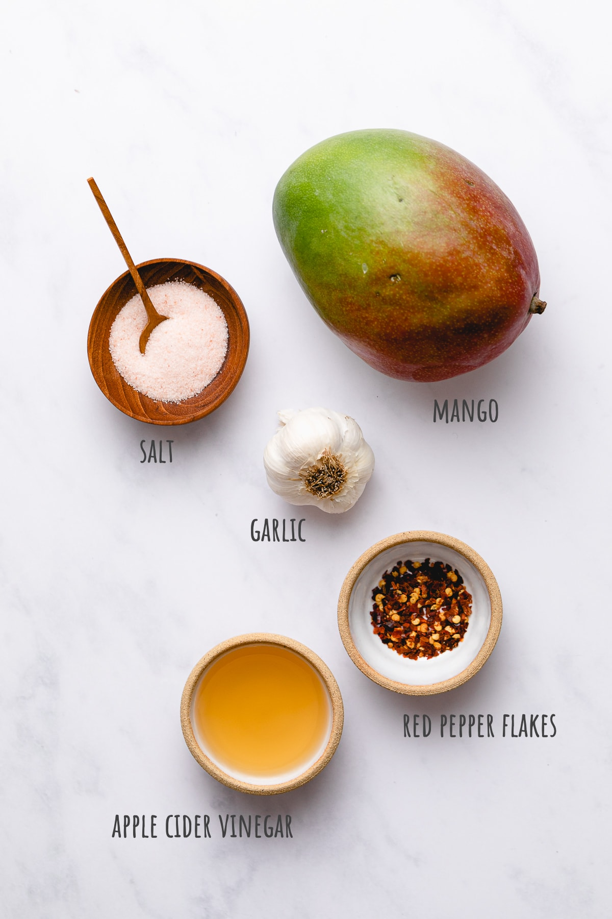 top down view of ingredients used to make the best mango dressing.