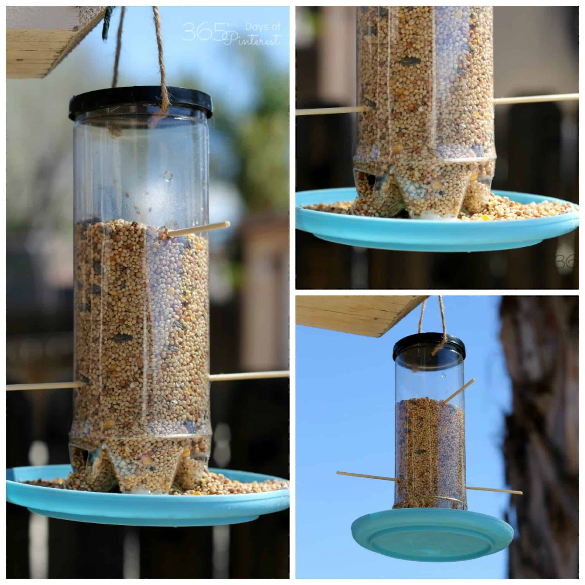 collage image of home made bird feeder using an empty tennis ball carton