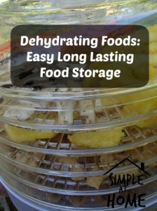 Dehydrating Foods: Easy Long Lasting Food Storage