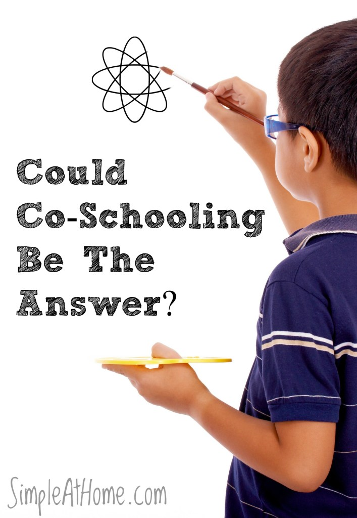 Are you not satisfied with your child's education? Co-schooling could be the answer