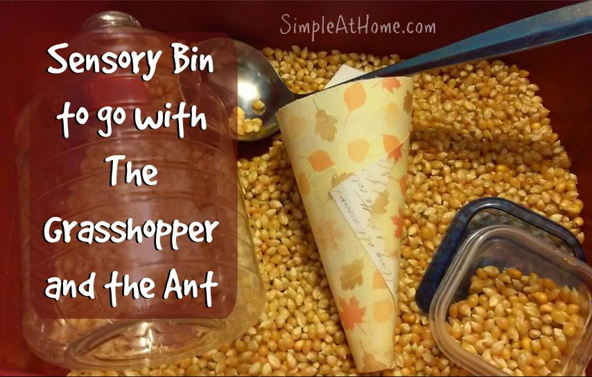 Corn Sensory Bin for The Grasshopper and the Ant