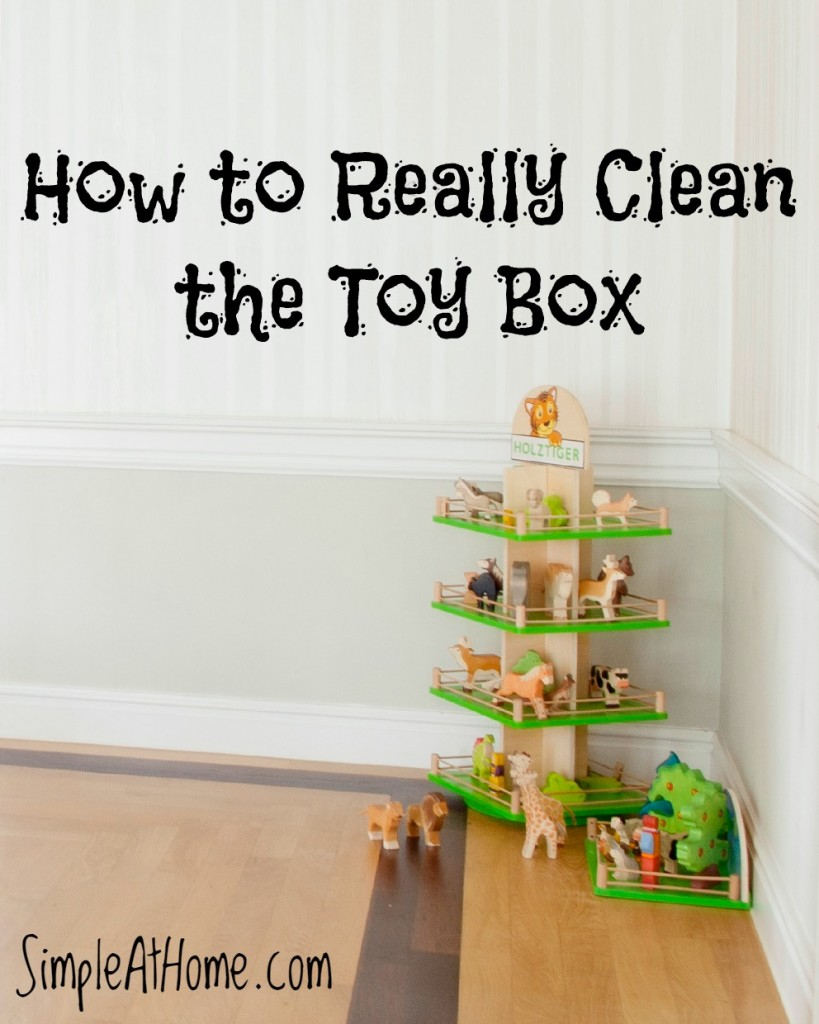 How to Really Clean the Toy Box