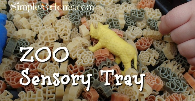 Zoo Sensory Bin