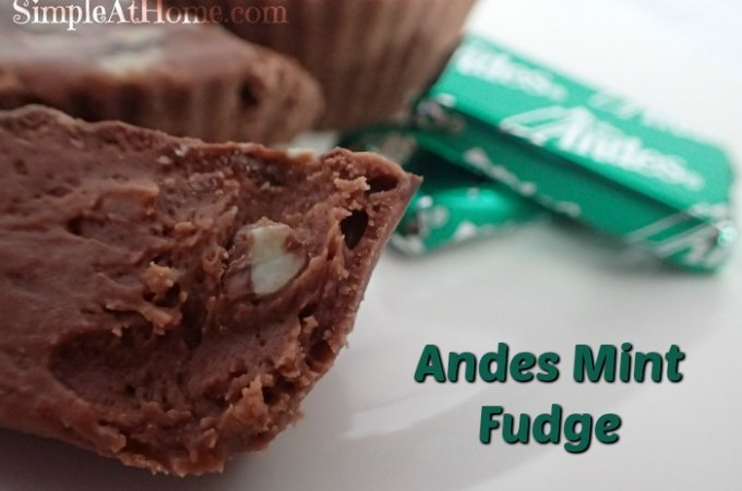 Andies Mint Fudge