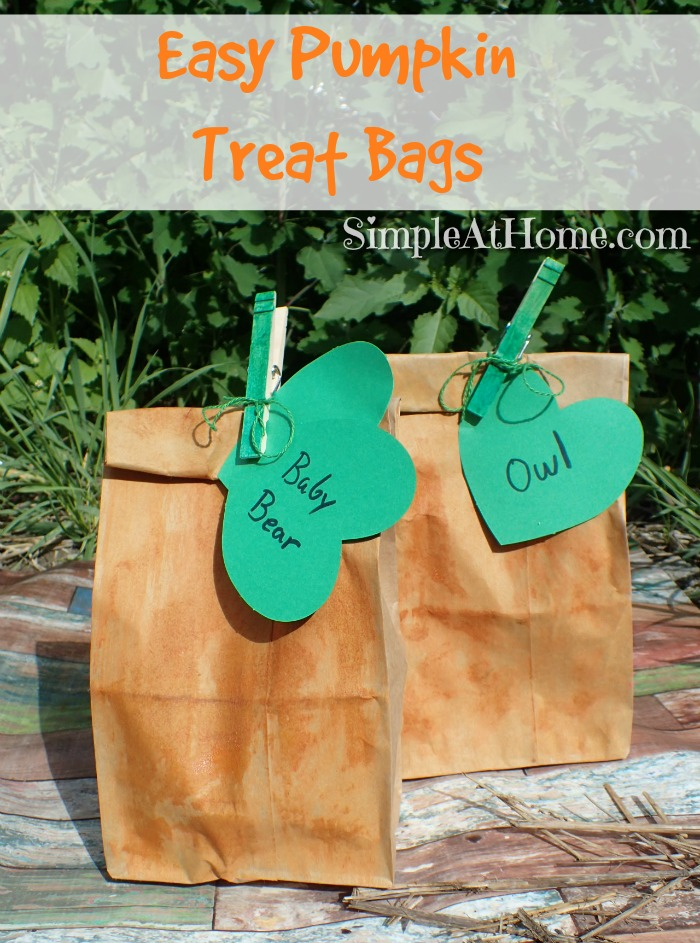 want a cute lunch sack or treat bag? This pumpkin DIY is so cute