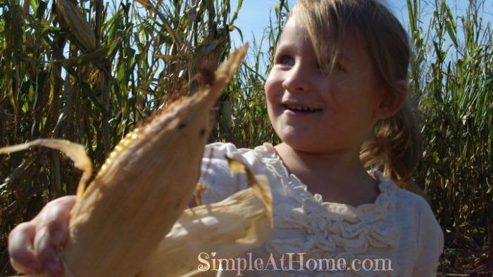 Fall field trip: pumpkin patch