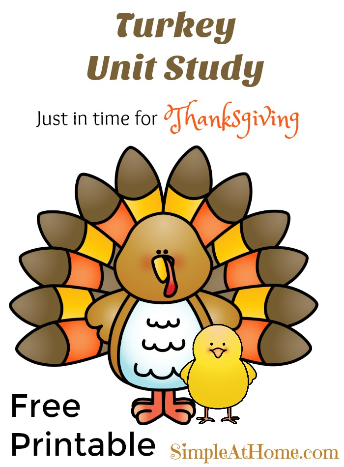 This easy turkey unit study is perfect for thanksgiving and comes with a great free printable on the life-cycle of a turkey.