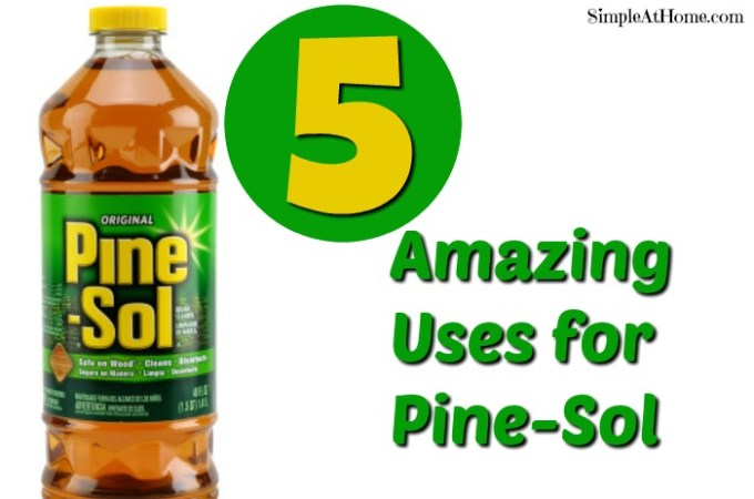 5 Ways to Use Pine Sol
