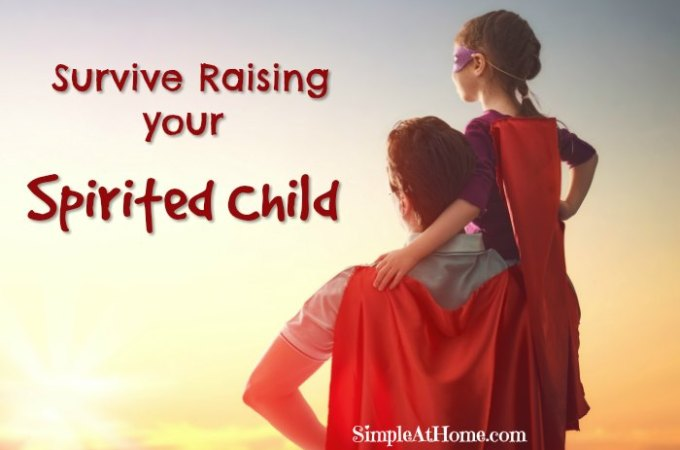 Simple Tricks to Survive Raising your Spirited Child