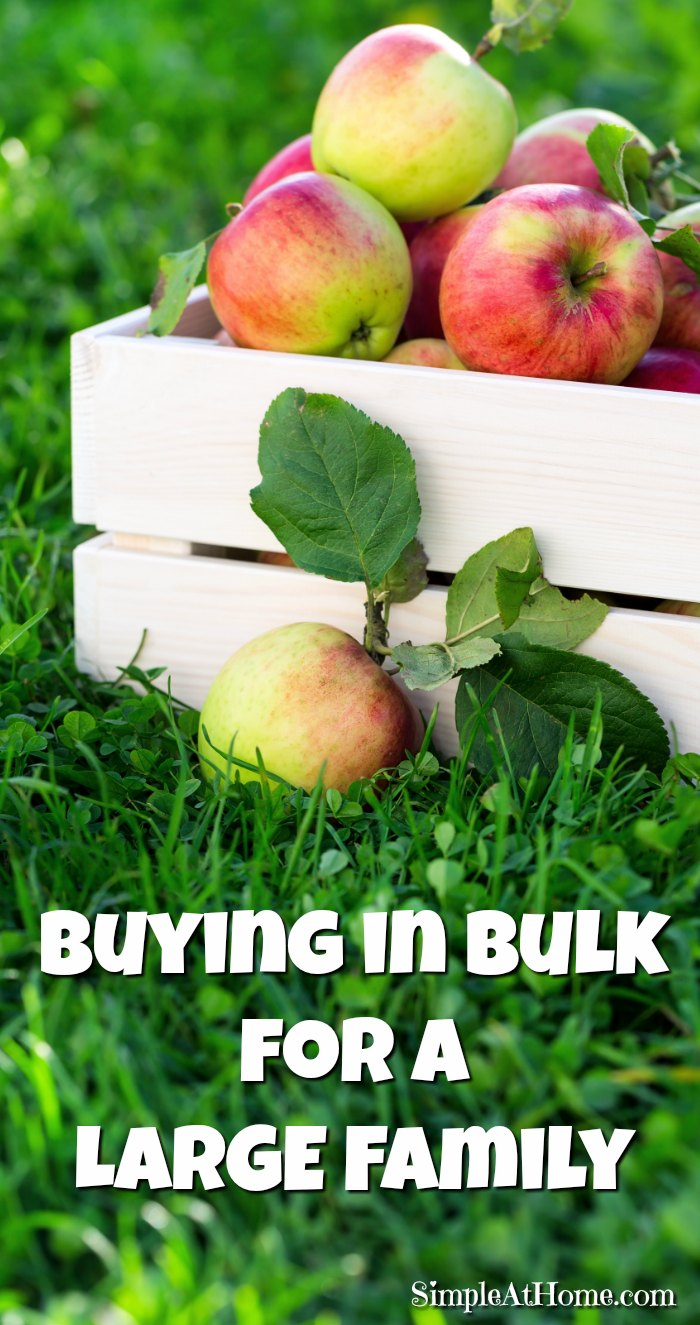 Affording the Basics for a Large Family by Buying in Bulk