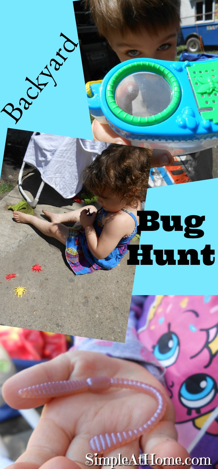Playing with bugs and crawly things with Mother Goose Time