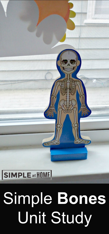 Simple Bones Unit Study