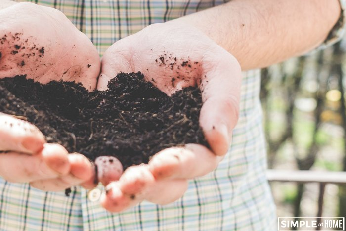 What to compost for a thriving garden