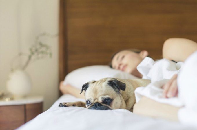 10 Ways to Save on a New Mattress & Bed Frame