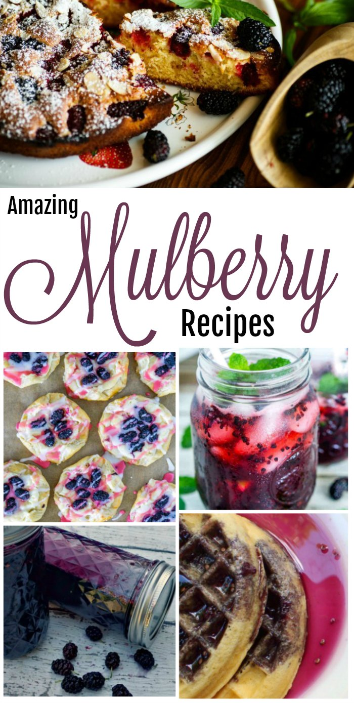 Amazing Mulberry Recipes