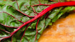 Hearty Red Kale