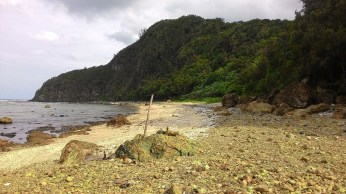 shoreline of the smaller cove made-up of shells and corals washed ashore