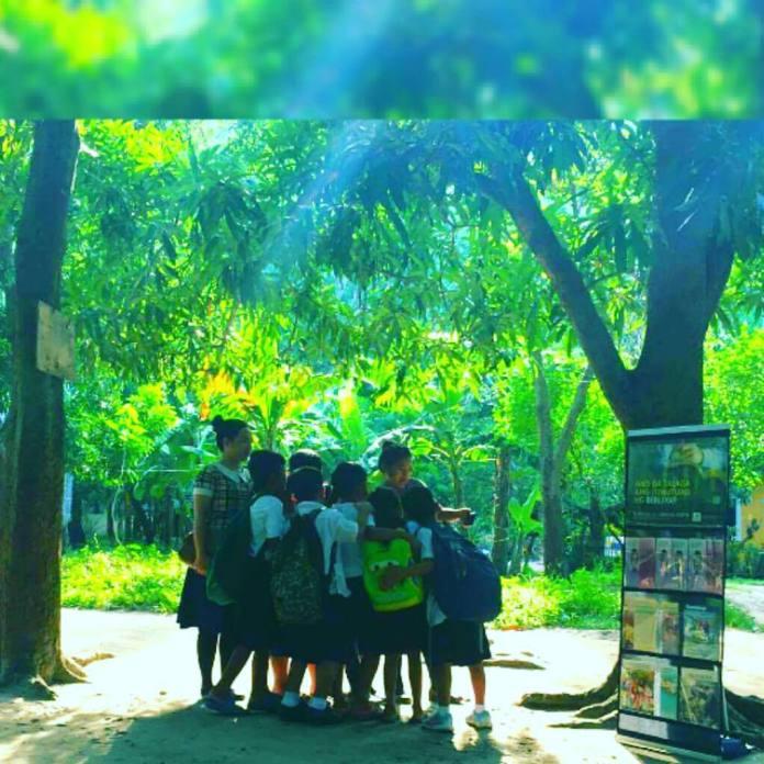 cart witnessing near a school